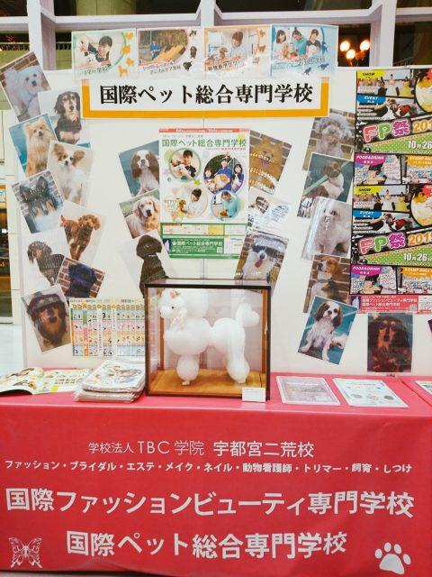 ★イベント★ララスク学園祭にブースを出展!!